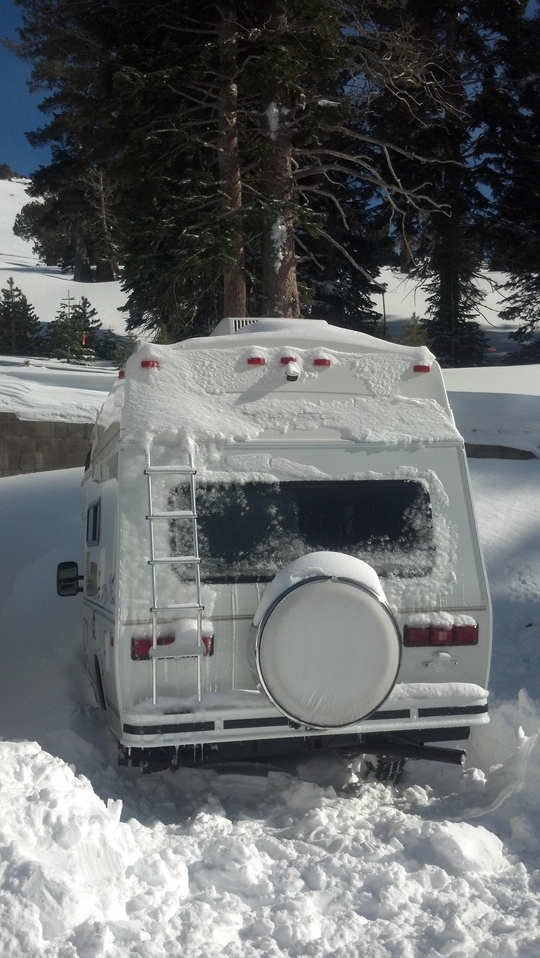 Tigger under snow