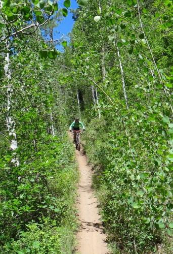 2013-06-20 Hermosa Creek Trail 046