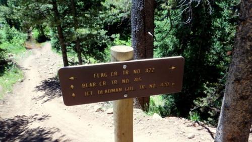 2013-07-02 Reno Flag Bear Deadman 003