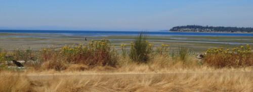 2013-08-06 Birch Bay 006